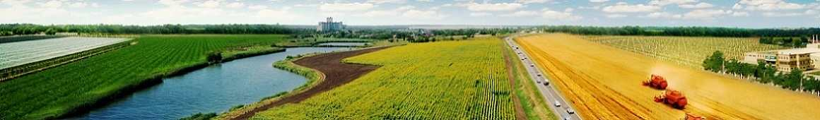 INVESTMENTS IN RUSSIAN AGRICULTURE