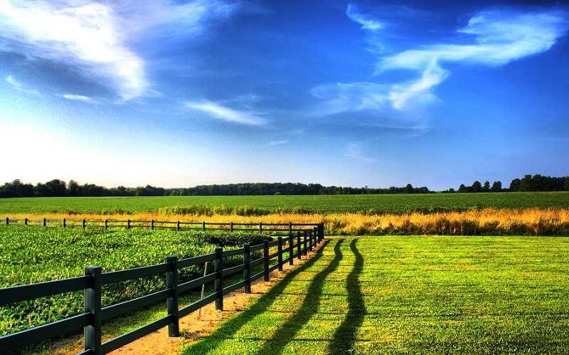 Нужно ли межевать земли сельхозназначения